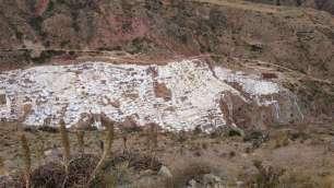 Visite des salinières de Maras