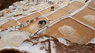 Les femmes y travaillent le sel à main nue