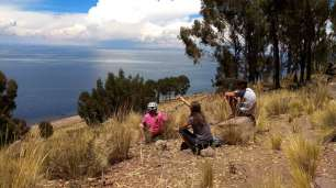 Pause déjeuner face au lac et sous les eucalyptus. La Bolivie en face.