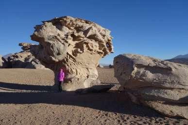 Devant l'arbre de pierre, sculpté par le vent