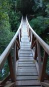 Des ponts en bois