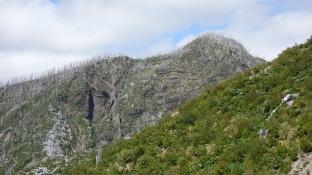 Les vestiges de l'éruption de 2008 : arbres brûlés, coulées de roches et de cendres...