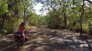 Sur le chemin du bush