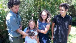 Le clou de la semaine pour les enfants. Pendant que les parents partent en rando, les enfants ont la chance de voir un bébé kiwi né en captivité, avant qu'il ne soit relâché dans la nature. Cela n'arrive pas souvent, moins de 10 par an. Sur la photo ce kiwi déjà gros n'a pourtant que quelques jours. L'oeuf du kiwi est très gros, il représente 20% du poids de la femelle.