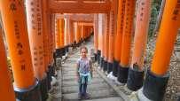 Ici au temple Fushimi Inari-taisha - Le sanctuaire aux 10 000 torii (portes) dans la montagne