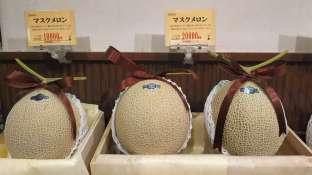 Par contre côté fruits, c'est un peu dur. La majorité des fruits sont importés et très chers. Les japonais ont donc coutume de se les offrir comme cadeaux. Ici un melon à 160 euros...