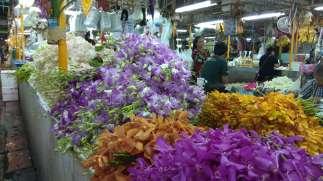 Visite d'un marché aux fleurs