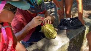 Test du fameux durian...