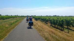 Puis nous quittons la côte atlantique et rentrons dans les terres. Champs de maïs et vignes rythment notre chemin...