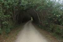 et de jolis chemins couverts.